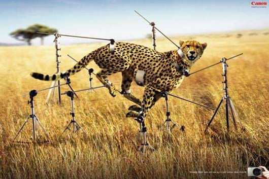 23 Most Innovative And Thought Provoking Advertising All